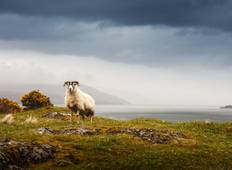 5-Day Iona, Mull & the Isle of Skye Small-Group Tour from Edinburgh Tour