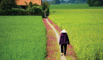 Vietnam - South to North 10 days Tour