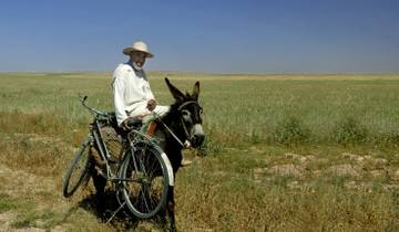 Morocco Horse Riding & Wellness Tour Tour