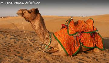 Highlights of Rajasthan with Desert Camping (Jaisalmer) Tour