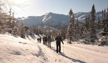 Cross-country Skiing: Kvitavatn Tour
