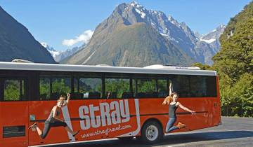 Stray - Ron Pass (South Island) Tour