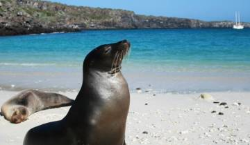 Best of Galapagos  Tour