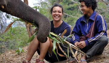 Conservation of Elephants in Thailand Tour