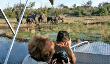 Okavango Wilderness Trail Accommodated (from Victoria Falls to Johannesburg) Tour