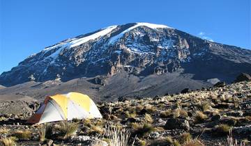 Lemosho Route with Kili Base Adventures Tour