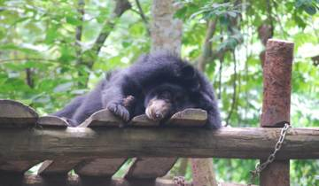 Wildlife Rescue Centre, Indonesia - 1 Week Tour
