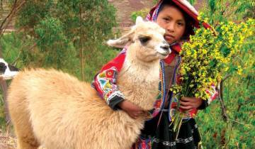 Peru Family Holiday Tour