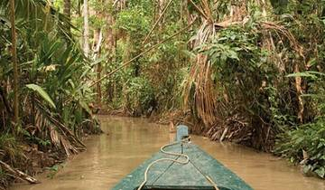Remote Amazon Experience- Independent Tour