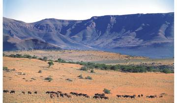 African Bush and Wildlife Experience 2 Weeks Tour