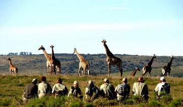 Big 5 Wildlife Conservation 2 Weeks Tour
