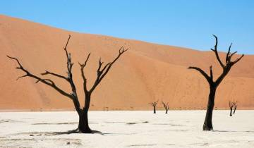 3 Day trip to the Namib Desert, including Sesriem and Sossusvlei Tour
