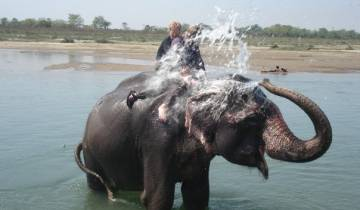 3 days Chitwan Jungle Safari Tour Tour