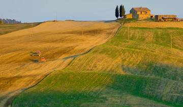 Italy - Etruscan Treasures Best of Tuscany (from Trevi to Siena) Tour