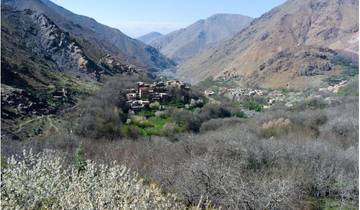 Berber Village Trek (4 days) Tour