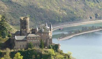 Rhine River and Castles Walk Tour