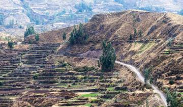 Mysteries of the Inca Empire with Arequipa & Colca Canyon Tour