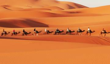 Marrakech, Sahara & Beach - 8 Days Tour