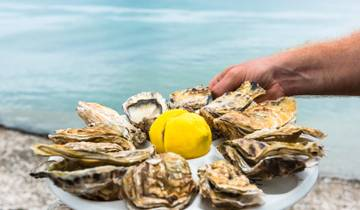 France Oysters and Wine Tour Tour