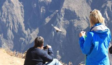 Arequipa & Colca Canyon (04 Days & 03 Nights) Tour