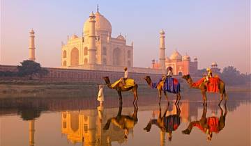 Taj Mahal and Wildlife with Royal Stay at Castles Tour