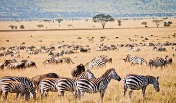 Cape Town to Kenya Accommodated Tour