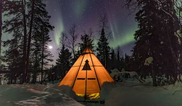 Northern Lights & wildlife in Swedish Lapland Tour