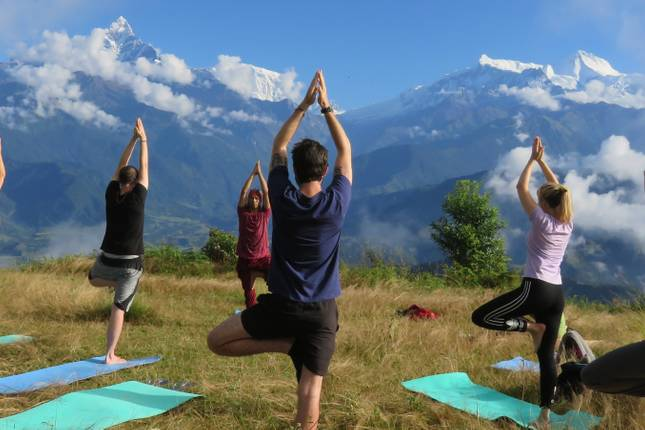 Image result for Yoga Tour