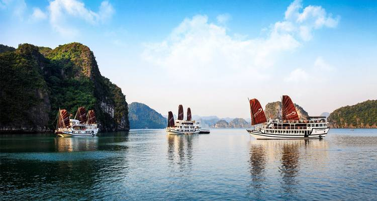Vietnam - North to South 10 days (incl. 1 free data sim card + entry to the Artinus 3D Art museum) - Vietnam Adventure Tours