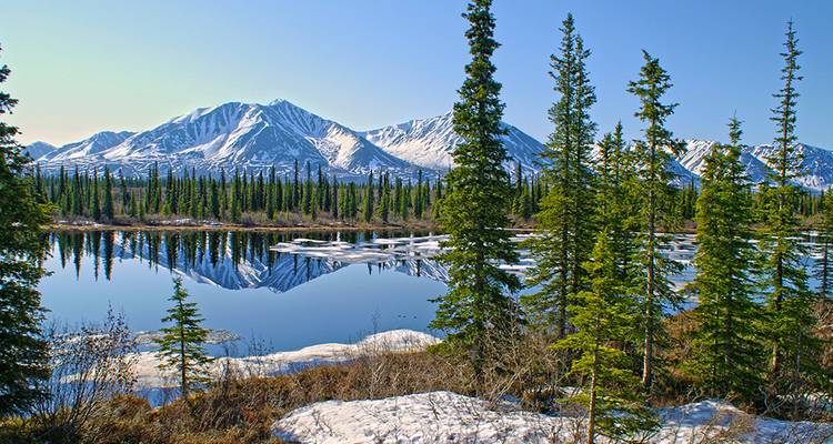 Alaska Discovery Land & Cruise featuring a 7-night Princess Cruise (Fairbanks, AK to Seattle, WA) (from Fairbanks to Seattle) - Collette