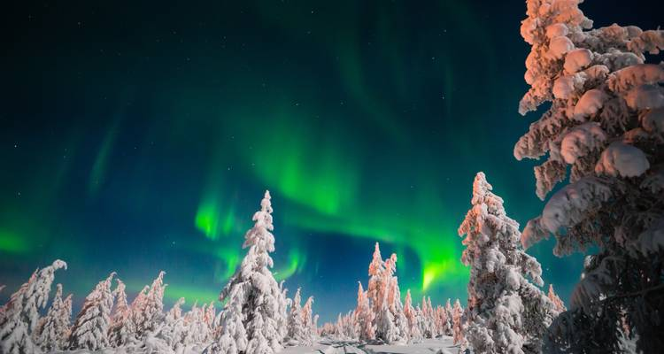 The Northern Lights of Finland  (2018) - Collette