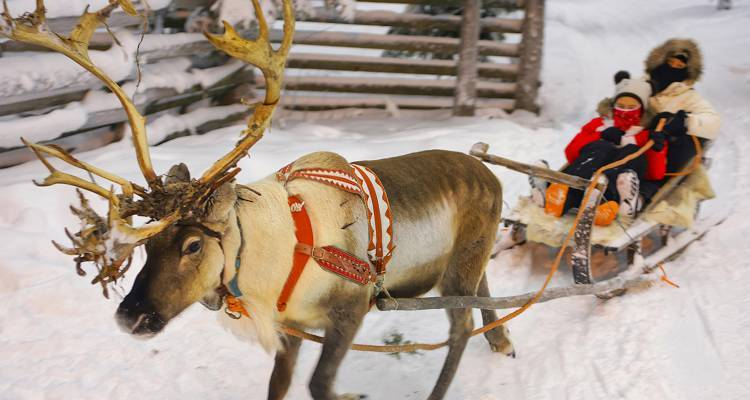 Christmas in Finland - 7 Days - On The Go Tours
