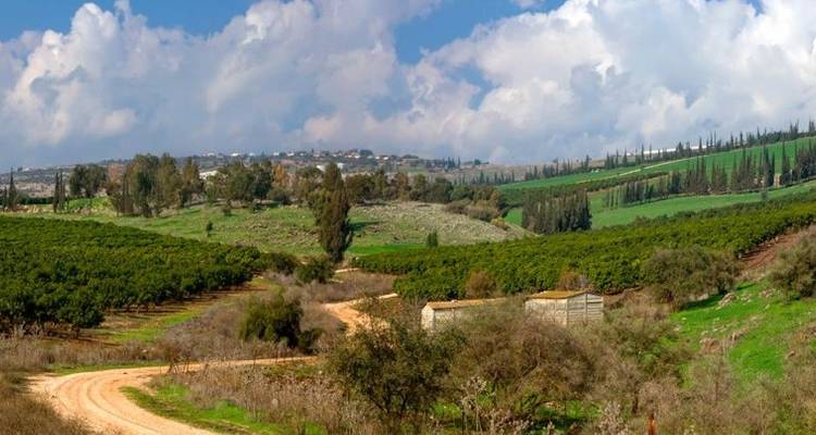 9 Day Christian Holy Land Israel Tour - Tourist Israel