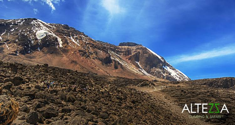 Climb Kilimanjaro: 8 Days Machame Route - Altezza Travel