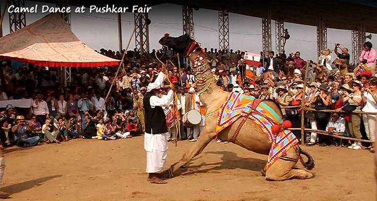 Essence of Rajasthan during Pushkar Fair (11 - 21 November 2018) - Fixed Departure - GeTS Holidays