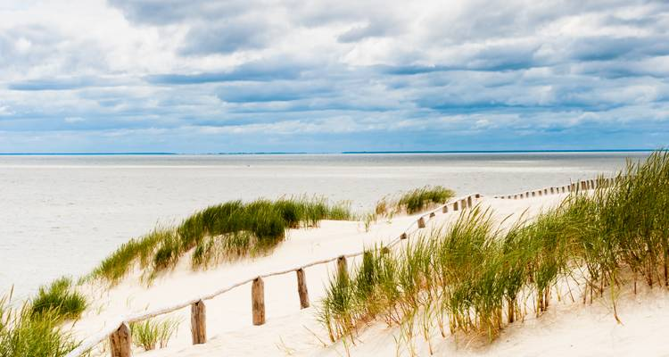 The best of Baltics + Curonian Beach Round Trip in 16 days - Baltic Tours