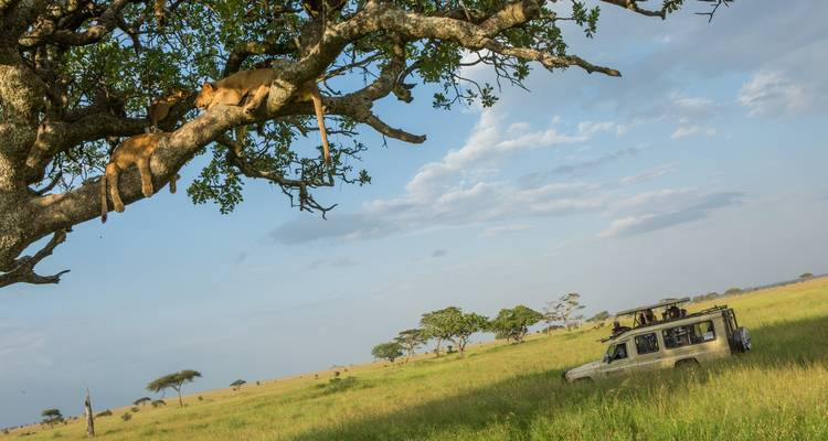 Southern Tanzania Safari - G Adventures