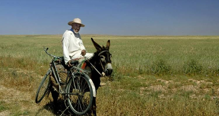 Morocco Horse Riding & Wellness Tour - Morocco Discoveries