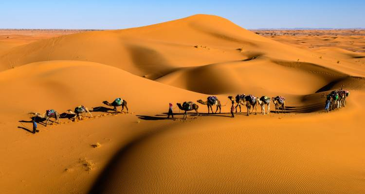 High Atlas Mountains and Sahara Adventure Tour - Morocco Joy Travel