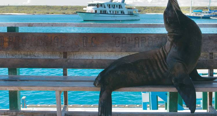 Classic Galapagos - Southern Islands (Grand Queen Beatriz) - Peregrine Adventures