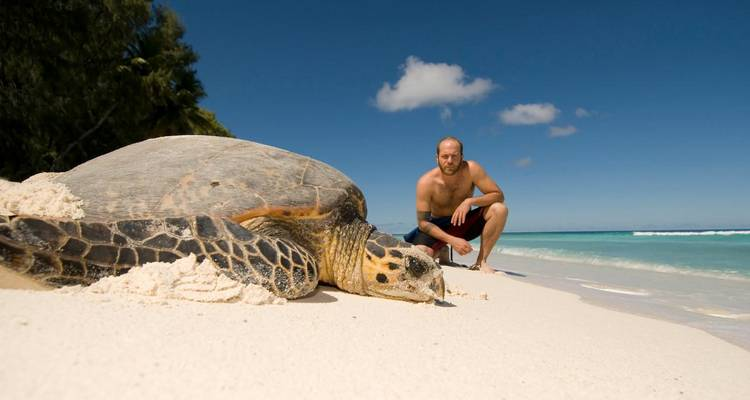 Costa Rica – The Sea Turtle Initiative  - Discover Corps