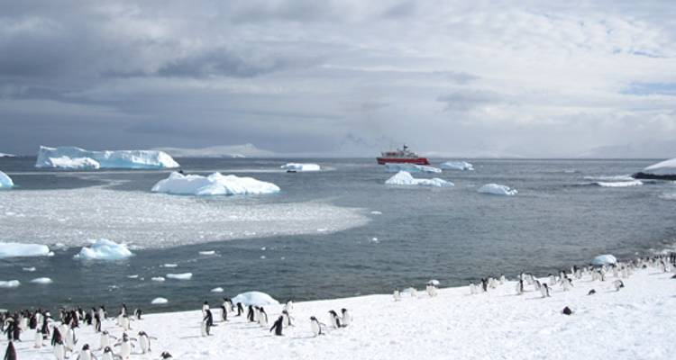 Quest for the Antarctic Circle - G Adventures