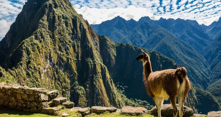 Best of Peru - LimaTours