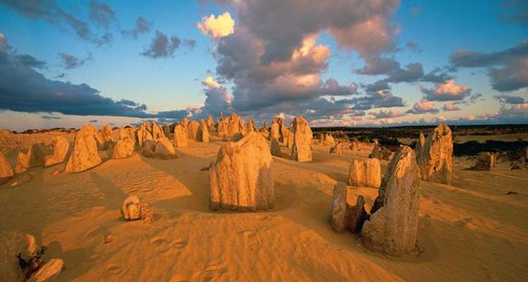 Full Day Pinnacles, Koalas and Sand Boarding 4WD Adventure - ADAMS Pinnacle Tours