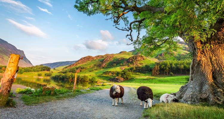 York, Durham and the Lake District tour - Timberbush Tours