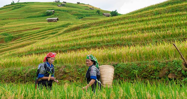 Sapa Adventure (Original) - Intrepid Travel