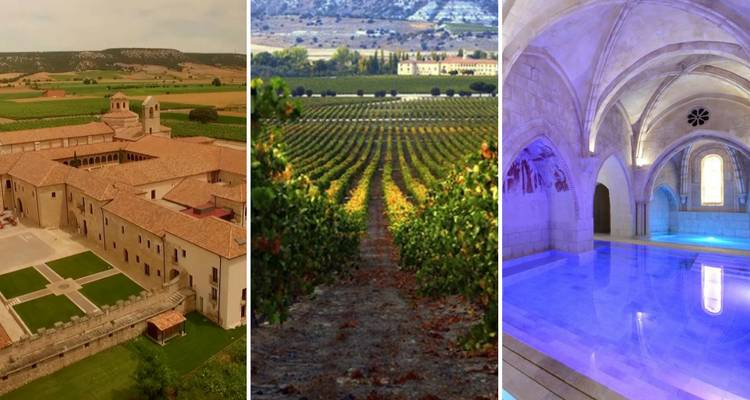 Ribera del Duero: The Spanish paradise for wine & food lovers - Eat Northern Spain