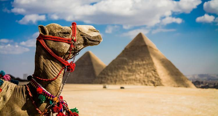 Cairo with Nile Cruise 8 Days 7 Nights Holiday - Your Egypt Tours