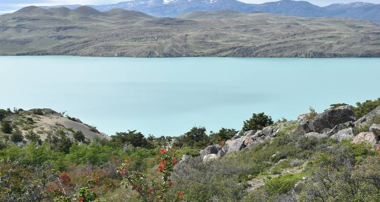 Patagonia: the Ultimate Adventure - Say Hueque Argentina & Chile Journeys