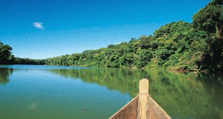 8-Day Iquitos Jungle Tour at Maniti Eco-Lodge - Maniti Expeditions